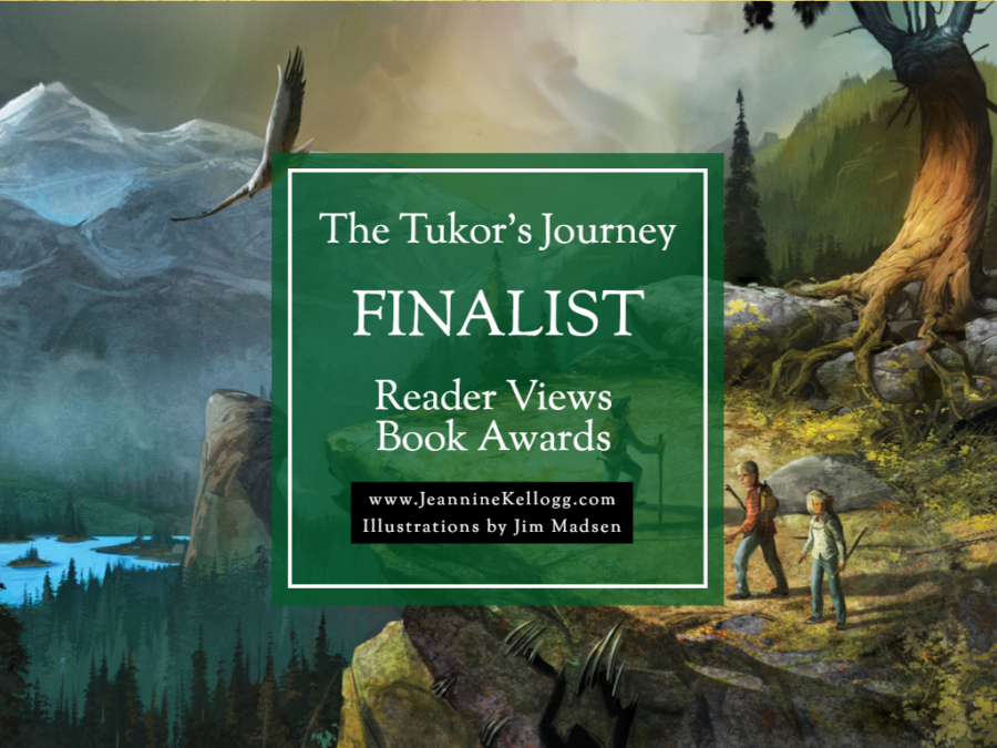 Book Award Finalist!